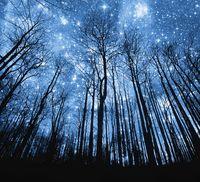 Ночь и магия любви