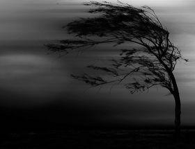 Ветер и любовная магия